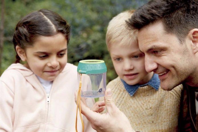 In einem Insektenglas wie hier von Hape kann man kleine Wesen ganz genau unter die Lupe nehmen.